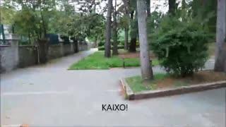 HERNANIKO PARKE BOTANIKOA